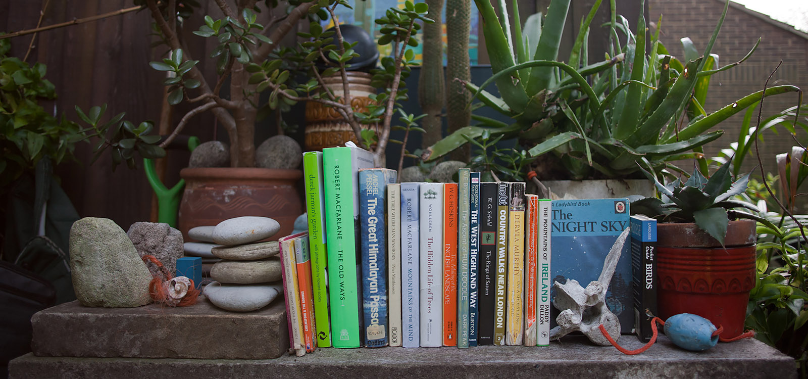 books on a concrete table surrounded by plants and detritus found in the hills and on beaches